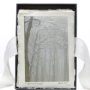 Lightwood, layers